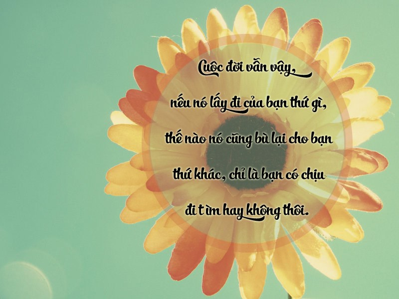 tho-ve-cuoc-song-14