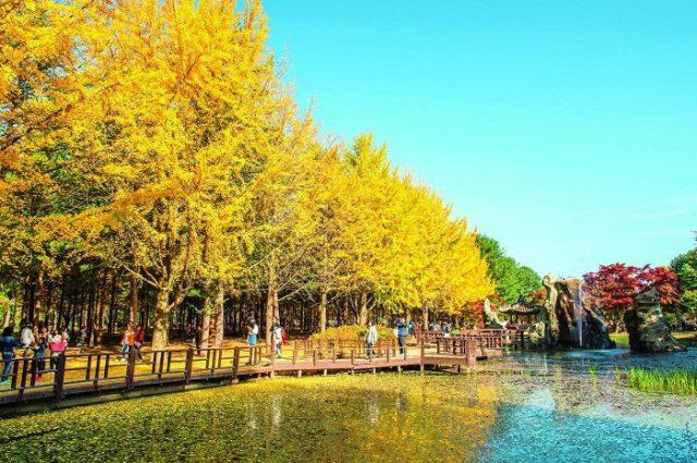 #40 bài thơ tình mùa thu Hà Nội, buồn, lãng mạn và cô đơn nhất