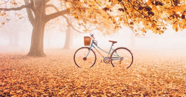 Bài thơ Đây mùa thu mới
