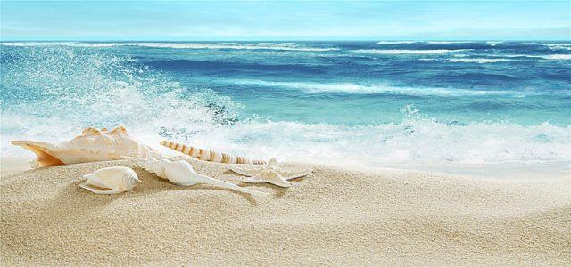 Bài thơ Đứng trước biển