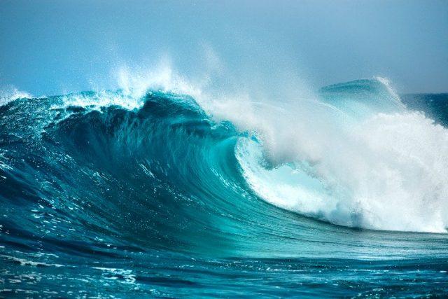 Bài thơ Mối tình của sóng