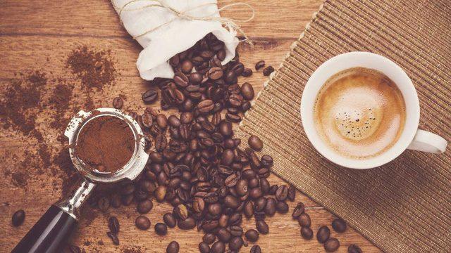 Bài thơ Mùa cà phê Tây Nguyên