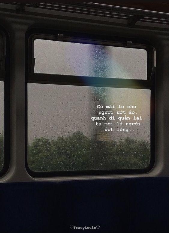 300 câu nói hay về sự vô tâm trong tình yêu mang nỗi buồn sâu lắng