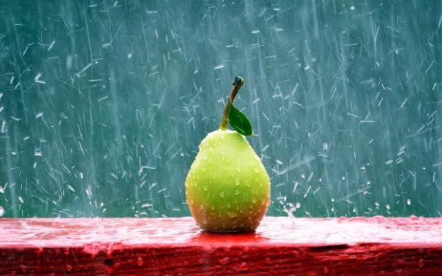 thơ tứ tuyệt về mưa